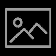 The Bim Prongs/Furchick - EC Split 15