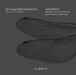 homogenized terrestrials/rafael flores - EC Split 14