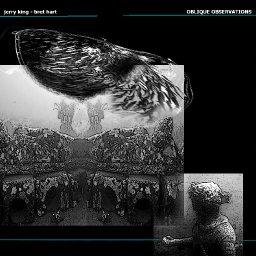 Jerry King & Bret Harold Hart - Oblique Observations