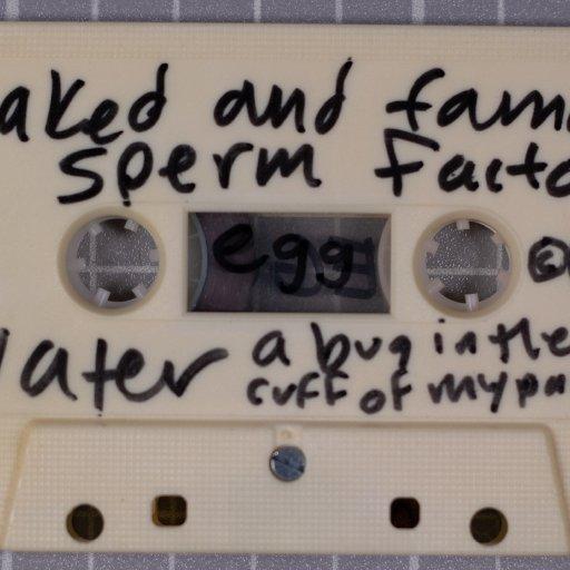EGG - Smell Me Fist - Tape Case - Side 1