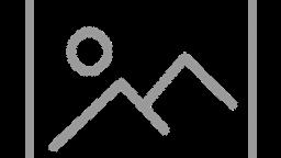 Greg Stomberg & Dan Susnara - Prequel: The 1st Annual Trips Festival